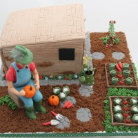 man sat in garden birthday cake